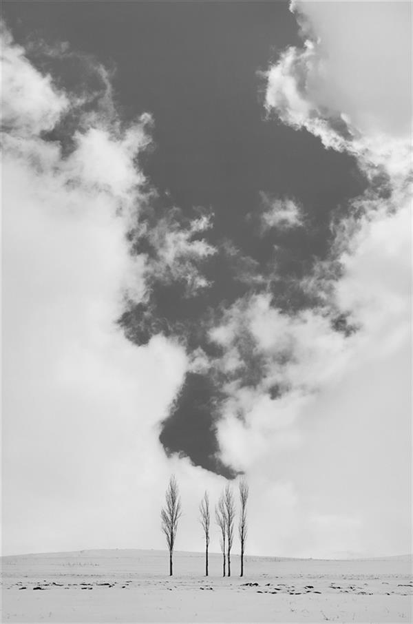 هنر عکاسی محفل عکاسی محمد دادستان Smash #برف #زمستان #مینیمال #انسان #ردپا #آرت #فاین_آرت #مونوکروم #سیاه_و_سفید #مفهومی #conceptual  #minimal #snow #fine_art #winnter #monochrome #human #art