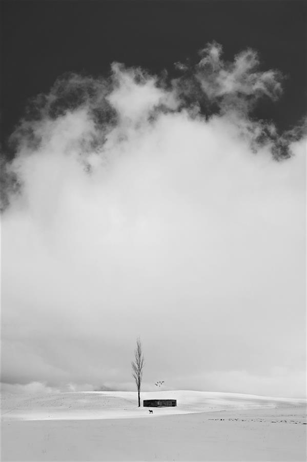 هنر عکاسی محفل عکاسی محمد دادستان Dream Hut in Cold Paradise #برف #زمستان #مینیمال #انسان #ردپا #آرت #فاین_آرت #مونوکروم #سیاه_و_سفید #مفهومی #conceptual #minimal #snow #fine_art #winnter #monochrome #human #art
