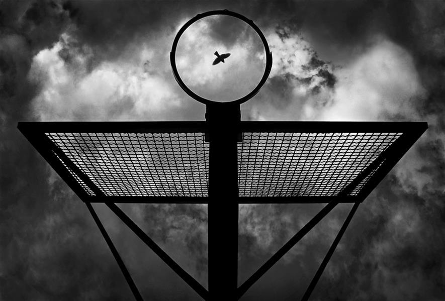 هنر عکاسی محفل عکاسی محمد دادستان One Flew Over the Cuckoo's Nest ... #مینیمال #خیابانی #آرت #مونوکروم #مفهومی #ضد_نور #تقارن