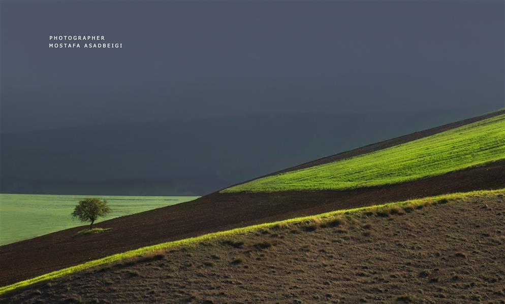 هنر عکاسی محفل عکاسی مصطفی اسدبیگی کردستان