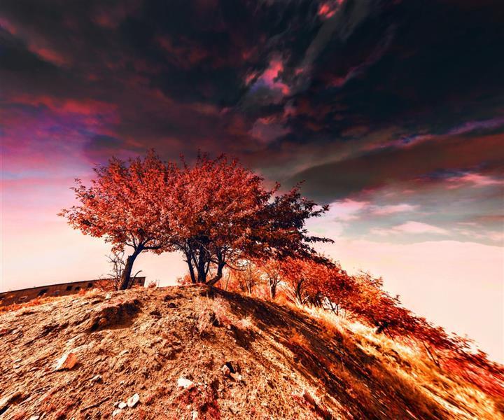 هنر عکاسی محفل عکاسی میثم عظیمی خشم آسمان...پاییز