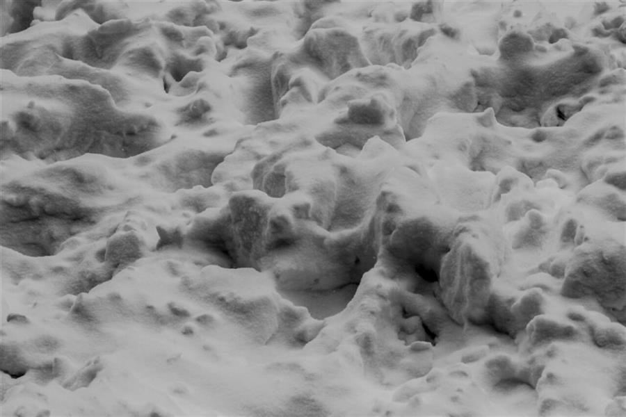 هنر عکاسی محفل عکاسی فاطمه فصیحی #برف#مینیمال#سیاه_و_سفید #black_and_white
