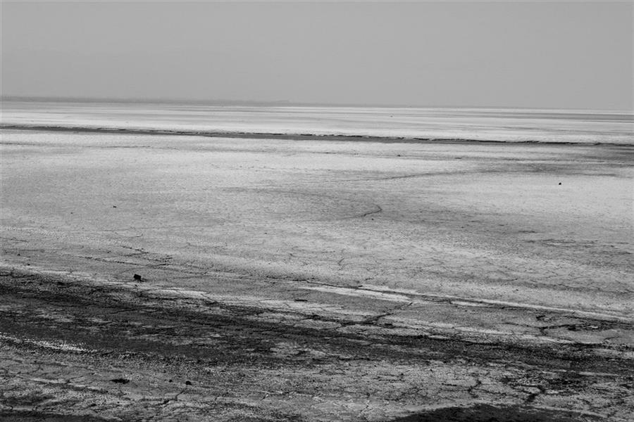 هنر عکاسی محفل عکاسی علی شادیفر این تصویر یک کویر زیبا یا یک بیابون کنار جاده نیست...این تصویر دردناک تصویر دریاچه ارومیه است که قبلا با دیدن اون دقیقه ها چشممان به زیباییش خیره میشد و در کنارش عکس های زیبایی میگرفتیم اما حال...عکس میگیریم ولی تماما با عنوان (ارومیه خشک-ارومیه مرده-و...)گرفتن این عکس برایم خیلی درد اور بود.خیلی زیاد
