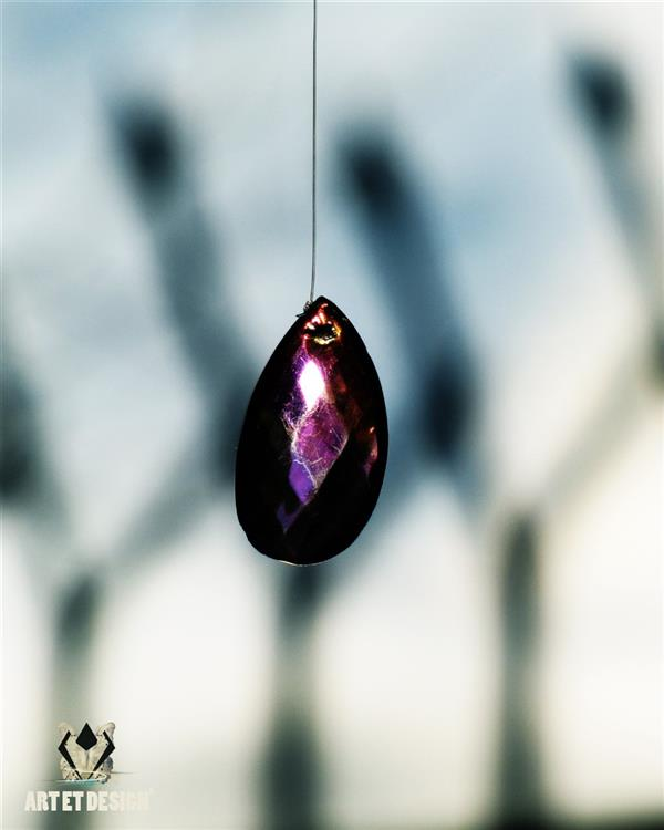 هنر عکاسی محفل عکاسی Art et design Violet