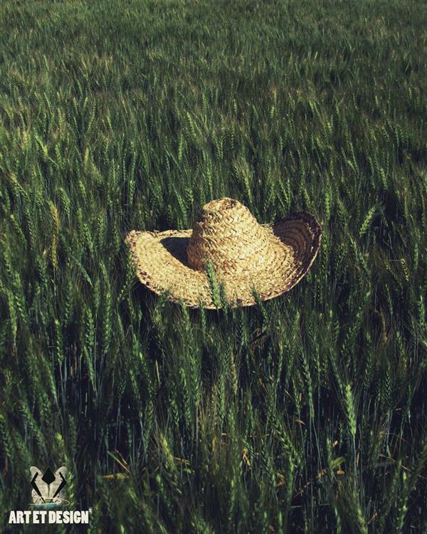 هنر عکاسی محفل عکاسی Art et design Hat wood green wheat