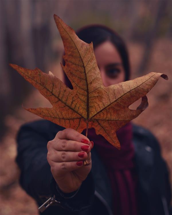 هنر عکاسی محفل عکاسی Khashayar #antumn Nikon d7100  50mm f1.8