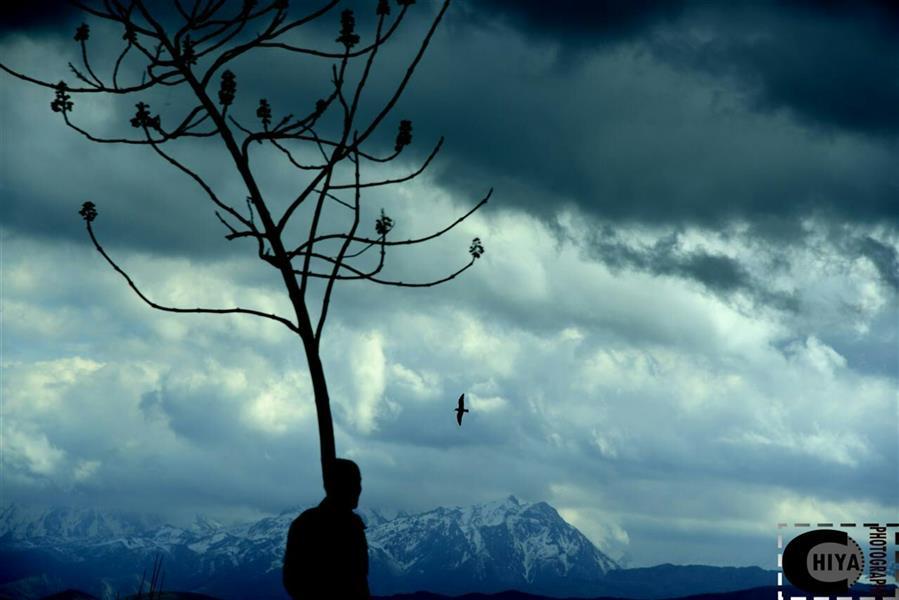 هنر عکاسی محفل عکاسی Tchiya انسان از طبیعت آمده و باز به طبیعت بازگشت خواهد گشت.