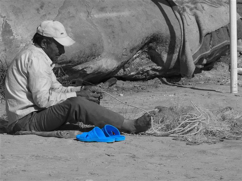 هنر عکاسی محفل عکاسی فاطمه سیاهپوش خوزستان