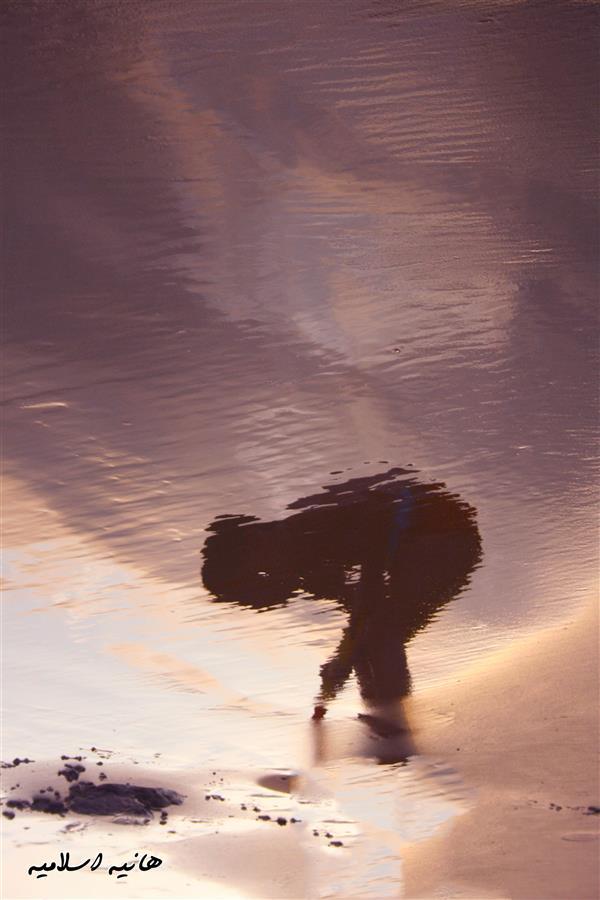 هنر عکاسی محفل عکاسی هانیه اسلامیه نام اثر :تولد دوباره  انعکاس