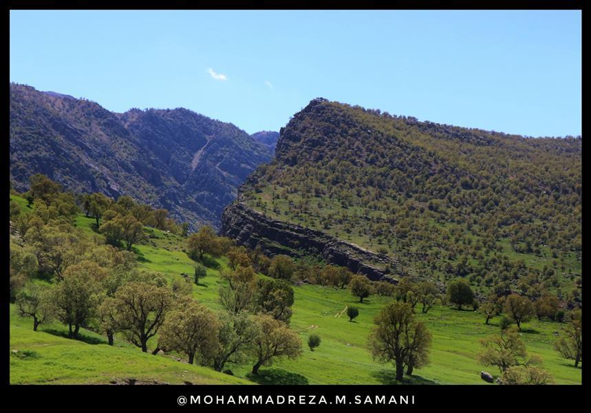 هنر عکاسی محفل عکاسی محمدرضا مردانی سامانی  #بازفت