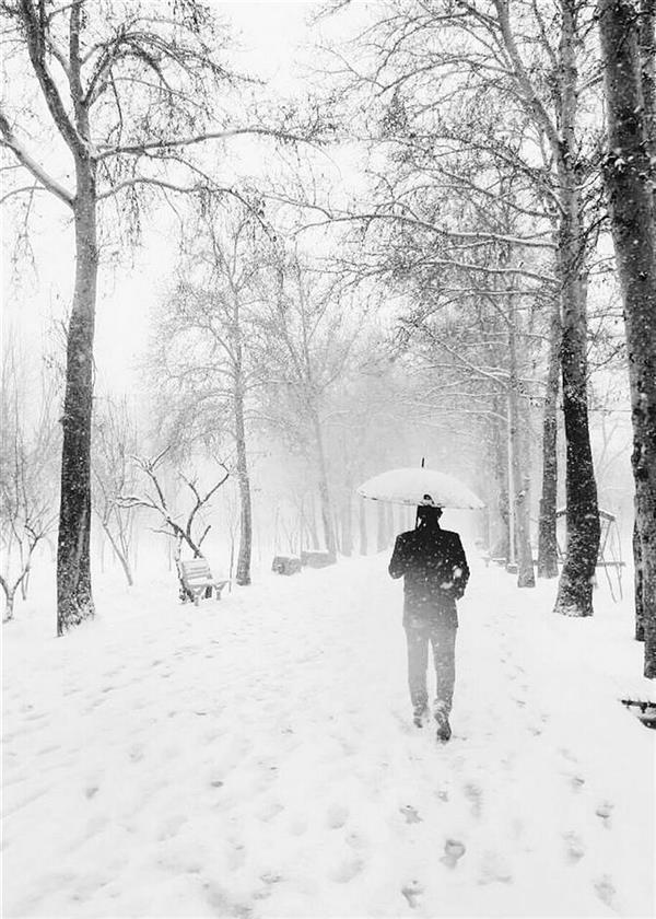 هنر عکاسی محفل عکاسی بابک جاودانه عکاس: #بابک_جاودانه  نام اثر: #قدم سال: ۱۳۹۵ #بابک #جاودانه