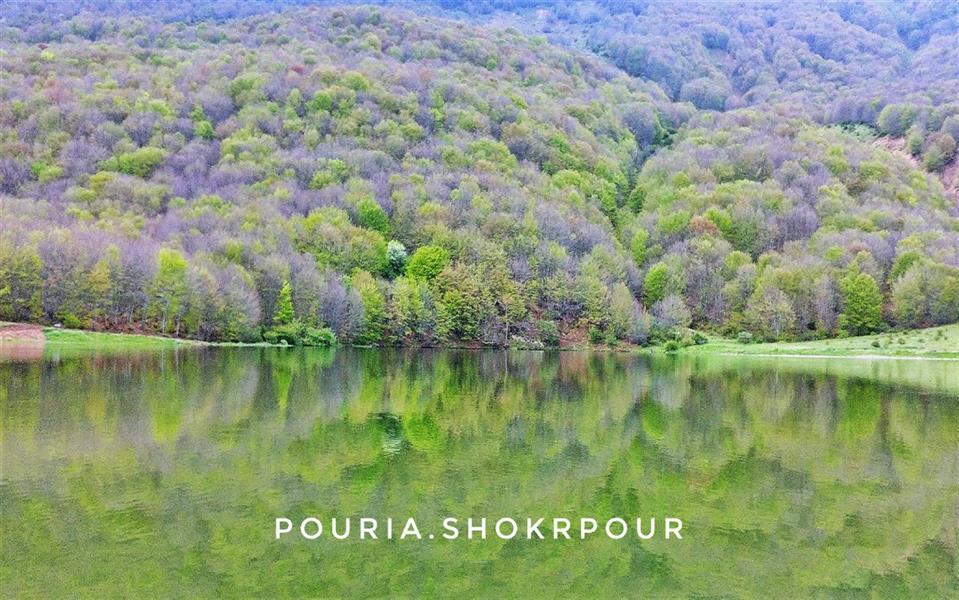 هنر عکاسی محفل عکاسی پوریا شکرپور #طبیعت_ایران دریاچه ویستان برهسر