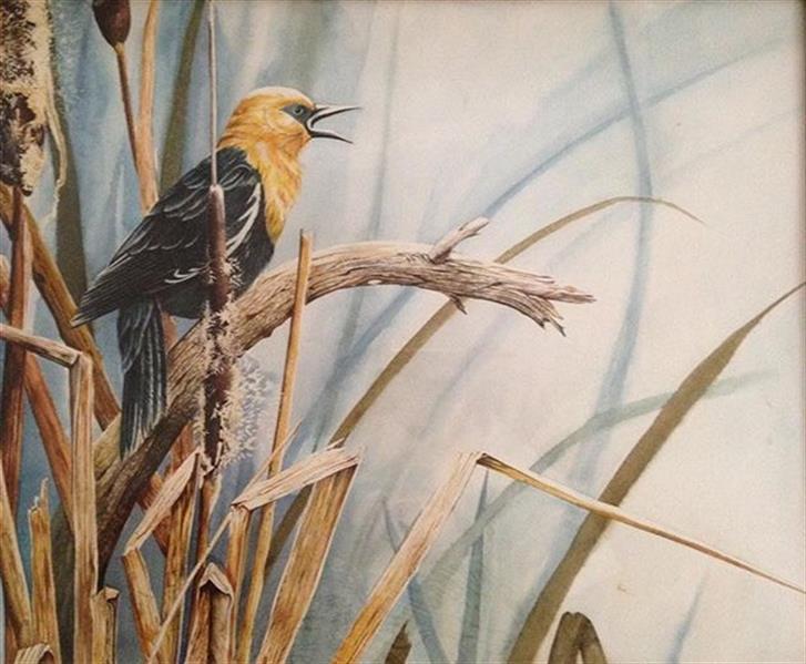 هنر نقاشی و گرافیک محفل نقاشی و گرافیک الهام رفیعی پرنده مرداب آبرنگ سایز اثر ٤٠ .٥٠