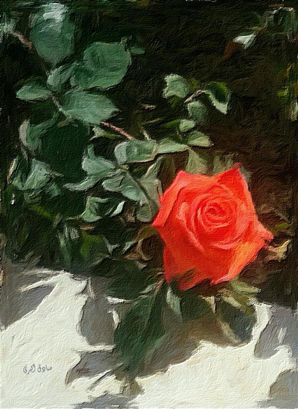 هنر نقاشی و گرافیک محفل نقاشی و گرافیک صادق اکبری اثر صادق اکبری #رنگ و روغن روی بوم