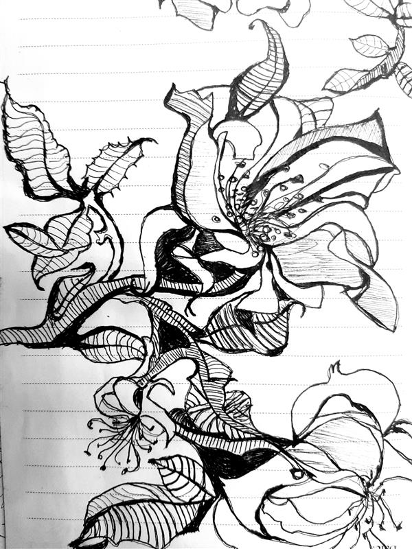 هنر نقاشی و گرافیک محفل نقاشی و گرافیک آسیه ابراهیمی