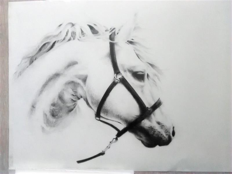 هنر نقاشی و گرافیک محفل نقاشی و گرافیک فهیمه اسدی اسب سپید در ابعاد ۵۰ در ۷۰