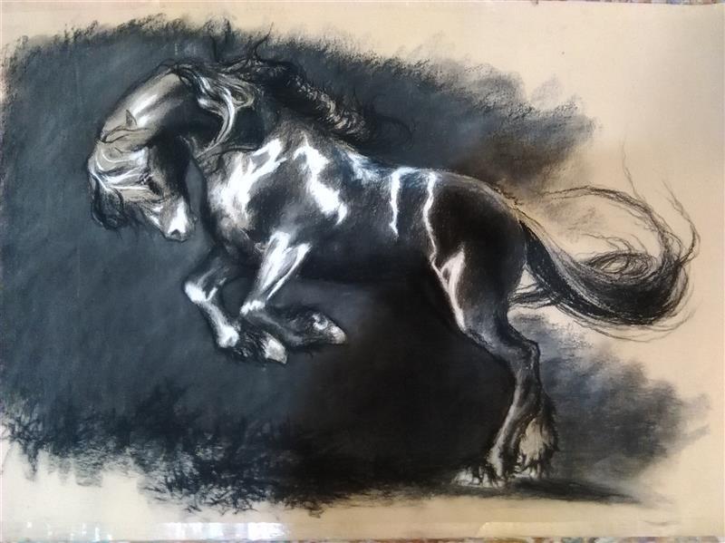 هنر نقاشی و گرافیک محفل نقاشی و گرافیک فهیمه اسدی اسب سیاه من