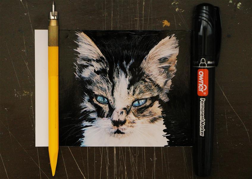 هنر نقاشی و گرافیک محفل نقاشی و گرافیک بهناز ابراهیمی ماژیک و خراش روی عکس ابعاد:10×13