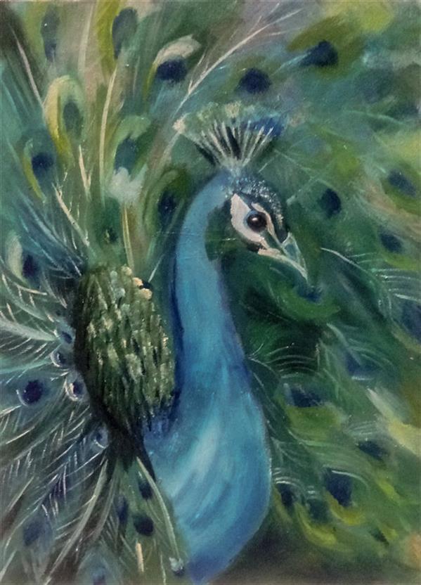 هنر نقاشی و گرافیک محفل نقاشی و گرافیک Negarnasr تابلوی رنگ و روغن،طرح طاووس،در ابعاد30×40