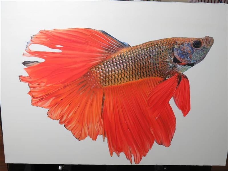 هنر نقاشی و گرافیک محفل نقاشی و گرافیک Negin kazemzadegan نقاشی با عنوان ماهی شاد در سبک هایپررئالیسم با رنگ و روغن روی بوم با ابعاد ۵۰×۷۰ سانتی متر #hyperrealism