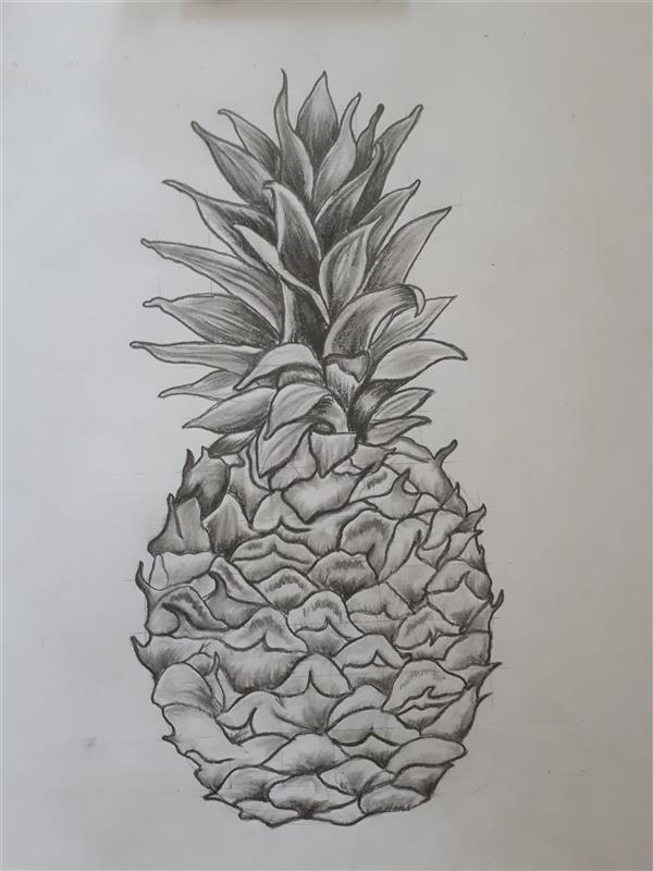 هنر نقاشی و گرافیک محفل نقاشی و گرافیک زهرا کلاته #سیاه_قلم #میوه