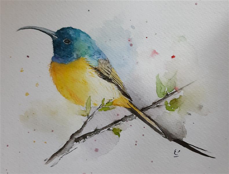 هنر نقاشی و گرافیک محفل نقاشی و گرافیک مریم ابراهیمی جمال #آبرنگ ۱۶×۲۱
