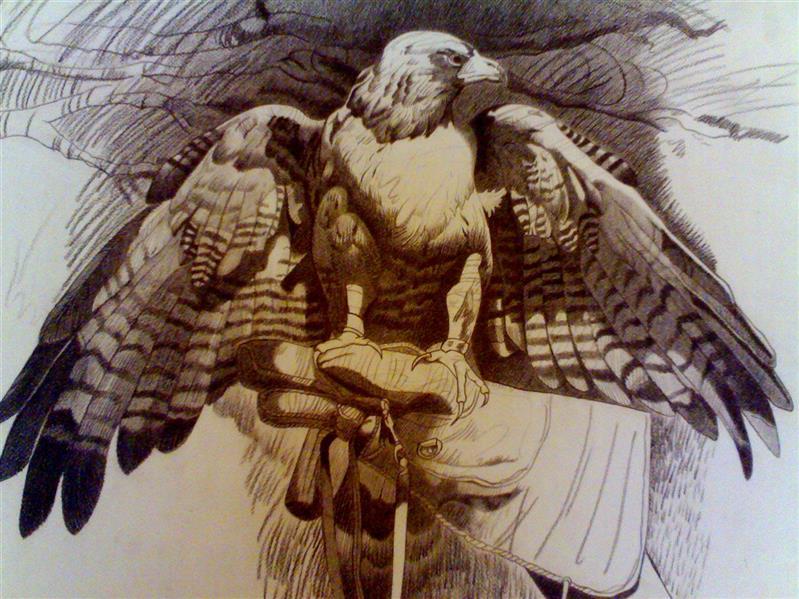 هنر نقاشی و گرافیک محفل نقاشی و گرافیک شیرین بهرامی 45درجه مدادپلی کروم/50*70/عقاب اثر شیرین بهرامی
