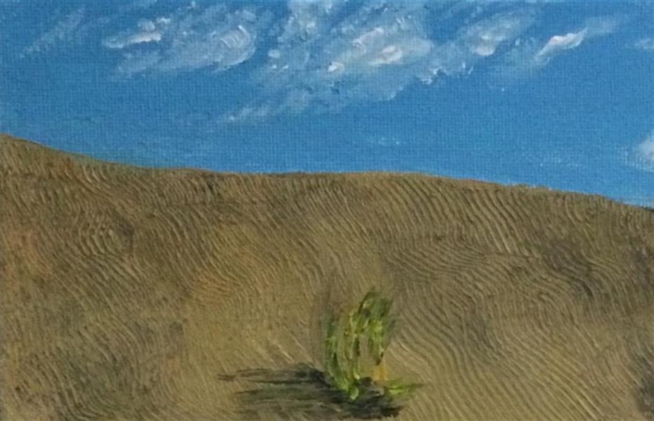 هنر نقاشی و گرافیک محفل نقاشی و گرافیک محمدظفر معتضدی #محفل نقاشی#اکریلیک روی بوم#۱۳۹۹#کویر#محمدظفر معتضدی