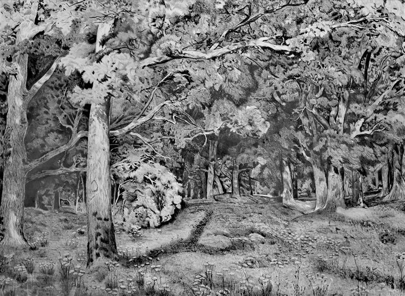 هنر نقاشی و گرافیک محفل نقاشی و گرافیک معصومه صباغی  طراحی مداد 6ب، 1399، بازآفرینی اثر ایوان شیشکین