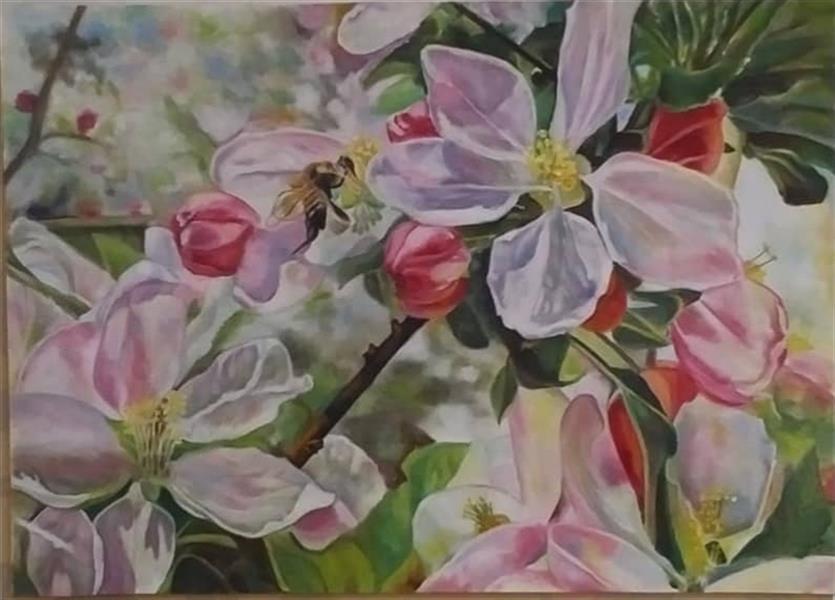 هنر نقاشی و گرافیک محفل نقاشی و گرافیک M-alahyari #طبیعت #بهار #شکوفه #رنگ روغن