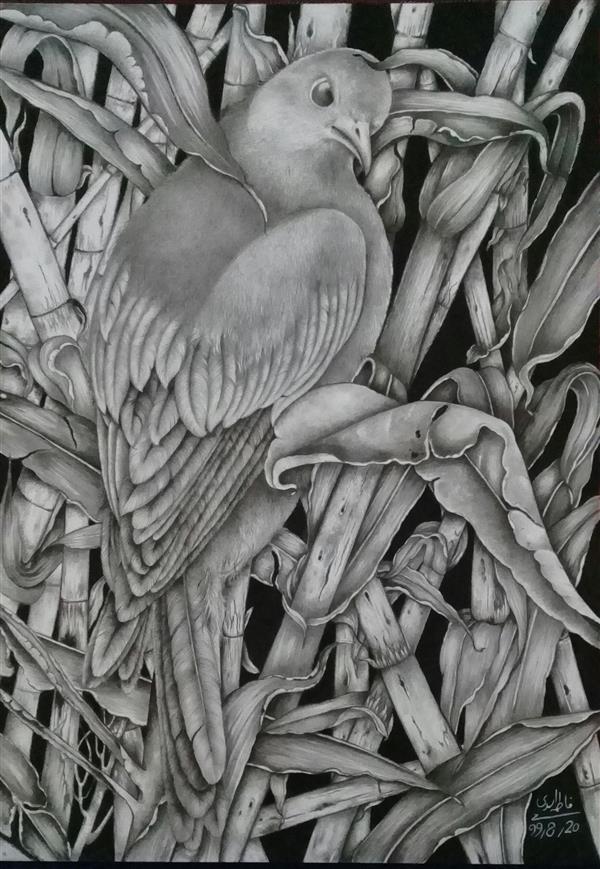هنر نقاشی و گرافیک محفل نقاشی و گرافیک فاطمه اسدی نام اثر :تنها اثراز :فاطمه اسدی