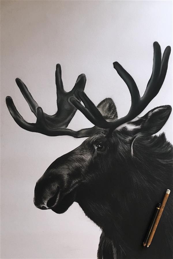 هنر نقاشی و گرافیک محفل نقاشی و گرافیک ملیکا توفیق بخت تکنیک #سیاه_قلم  ابعاد : ٧٠*٥٠