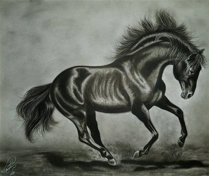 هنر نقاشی و گرافیک محفل نقاشی و گرافیک حسین هلالی #اسب #سیاه_قلم