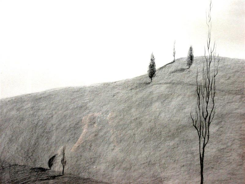 هنر نقاشی و گرافیک محفل نقاشی و گرافیک پروانه قاسمی مجموعه سکوت طبیعت  با الهام از طبیعت  تکنیک کنته و زغال