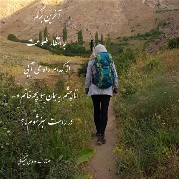 هنر شعر و داستان محفل شعر و داستان مهناز الله وردی میگونی آخرین برگم  به انتظار طلوعت از کدام راه می آیی  تا چشم به همان سو بچرخانم و در راهت سبز شوم.؟  #مهناز_الله_وردی_میگونی