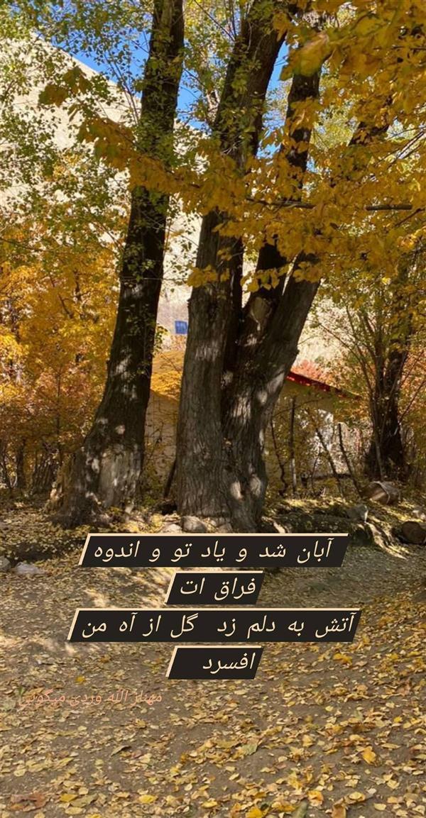 هنر شعر و داستان محفل شعر و داستان مهناز الله وردی میگونی #پاییز_قصران#آهار_شکراب#عشق#خزان#جدایی#آه