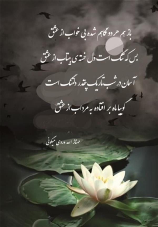 هنر شعر و داستان محفل شعر و داستان مهناز الله وردی میگونی باز هم هر دو نگاهم شده بی خواب از عشق بس که تنگ است دل خسته ی بیتاب از عشق  آسمان در شب تاریک چقدر دلتنگ است  گوییا ماه بر  افتاده  به مرداب از عشق