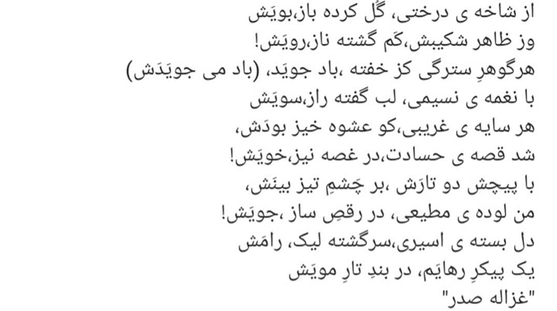 هنر شعر و داستان محفل شعر و داستان ghazaleh sadr #شعر#ترانه