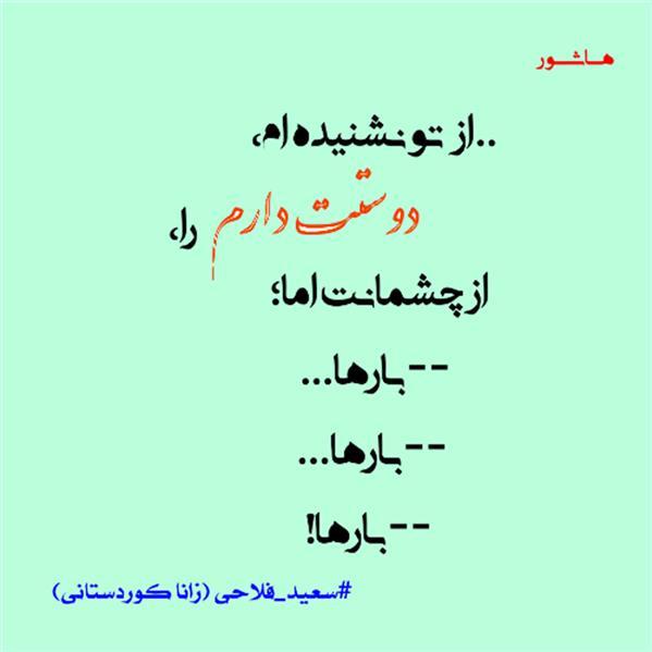 هنر شعر و داستان محفل شعر و داستان سعید فلاحی (زانا کوردستانی)