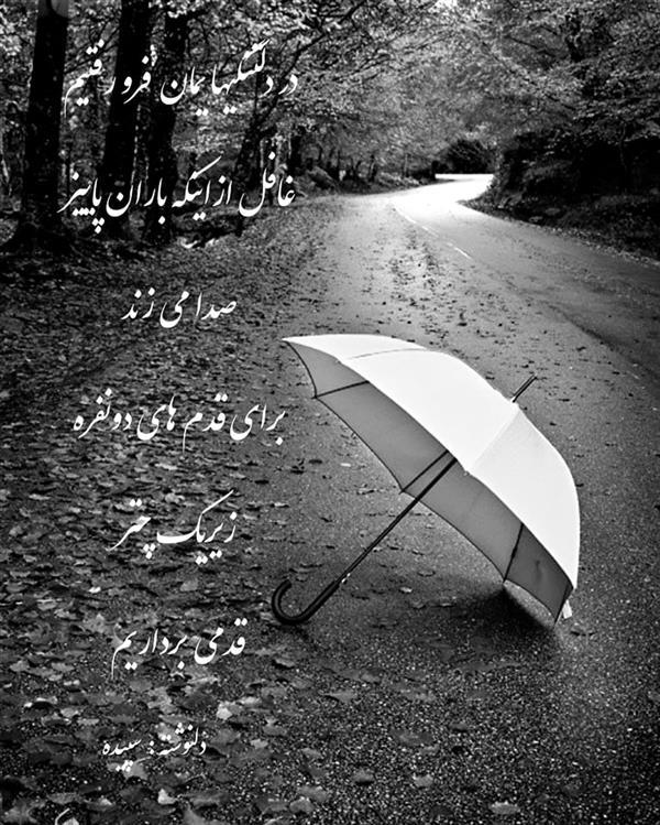 هنر شعر و داستان محفل شعر و داستان spd-art6112 #باران#دلنوشته#پاییز#سپیده#چتر#عاشقانه