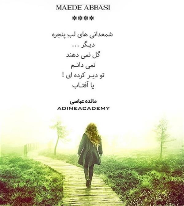 """هنر شعر و داستان محفل شعر و داستان مائده عباسی نام اثر """"شمعدانی ها"""""""