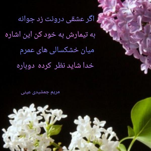 هنر شعر و داستان محفل شعر و داستان مریم جمشیدی عینی #عشق دوباره شعر: مریم جمشیدی عینی