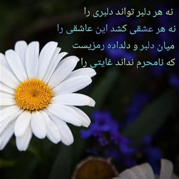 هنر شعر و داستان محفل شعر و داستان مریم جمشیدی عینی #راز دلبر دوبیتی مریم جمشیدی