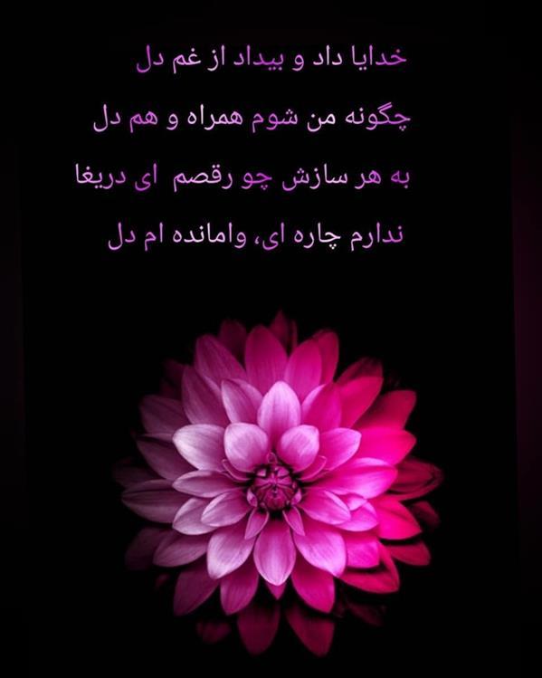 هنر شعر و داستان محفل شعر و داستان مریم جمشیدی عینی #دل مریم جمشیدی