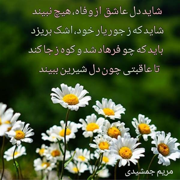 هنر شعر و داستان محفل شعر و داستان مریم جمشیدی عینی #چو فرهاد مریم جمشیدی عینی