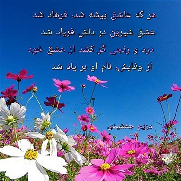 هنر شعر و داستان محفل شعر و داستان مریم جمشیدی عینی #وفا مریم جمشیدی عینی