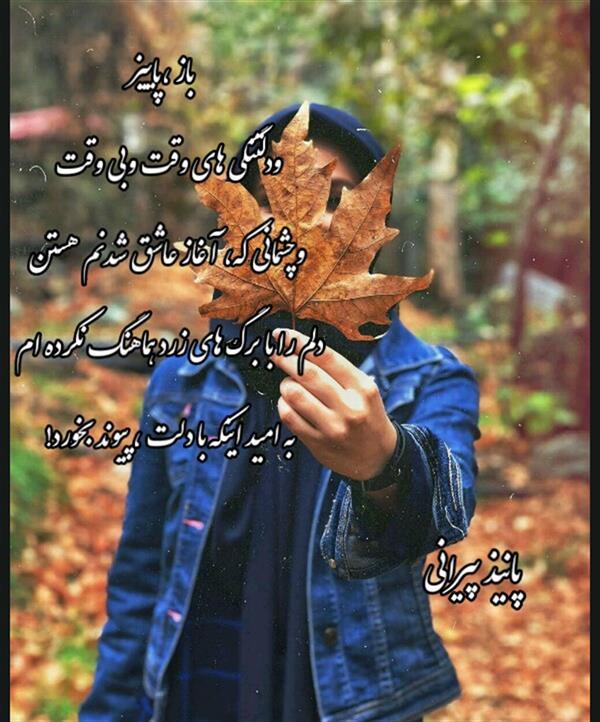 هنر شعر و داستان محفل شعر و داستان پانیذ پیرانی