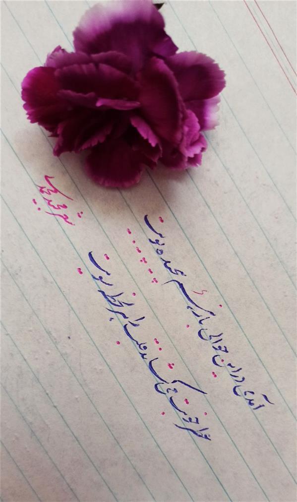 هنر شعر و داستان محفل شعر و داستان Majid Mohammadi آمدی در این حوالی، باز هم پیچیده بویت عطر خوبت می کشاند، قلب را هر لحظه سویت  #مجید_محمدی #تک_بیت #در_این_حوالی