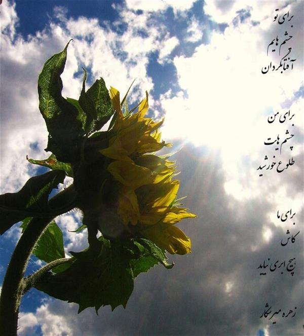 هنر شعر و داستان محفل شعر و داستان زهره میرشکار برای ما زهره میرشکار