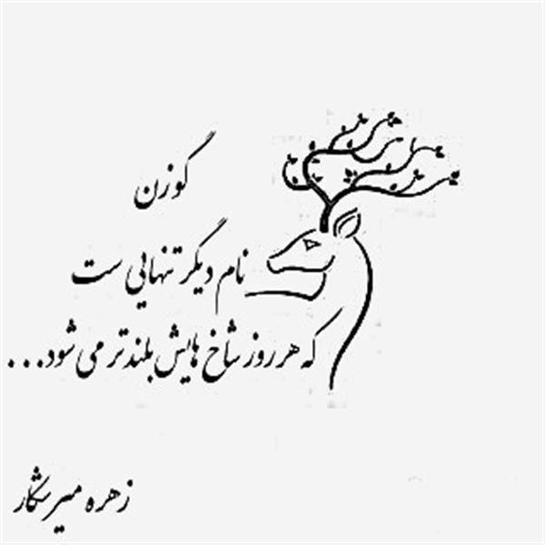 هنر شعر و داستان محفل شعر و داستان زهره میرشکار تنهایی